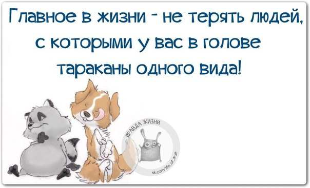 image.jpeg.a5817b12a1c07101a7046a22739e90e6.jpeg